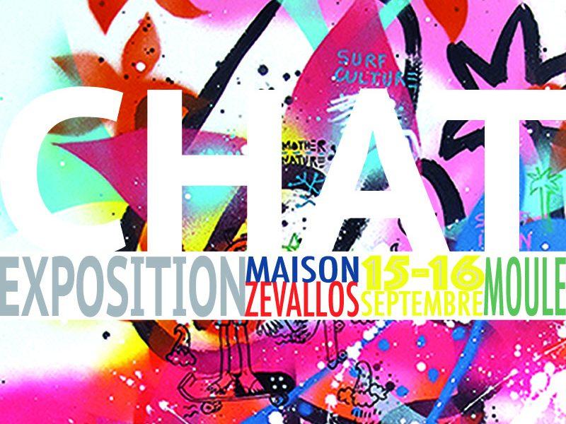 visuel-INSTAGRAM- celine-chat-EXPOSITION-MAISON ZEVALLOS